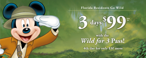 Disney World Wild for 3 Passes